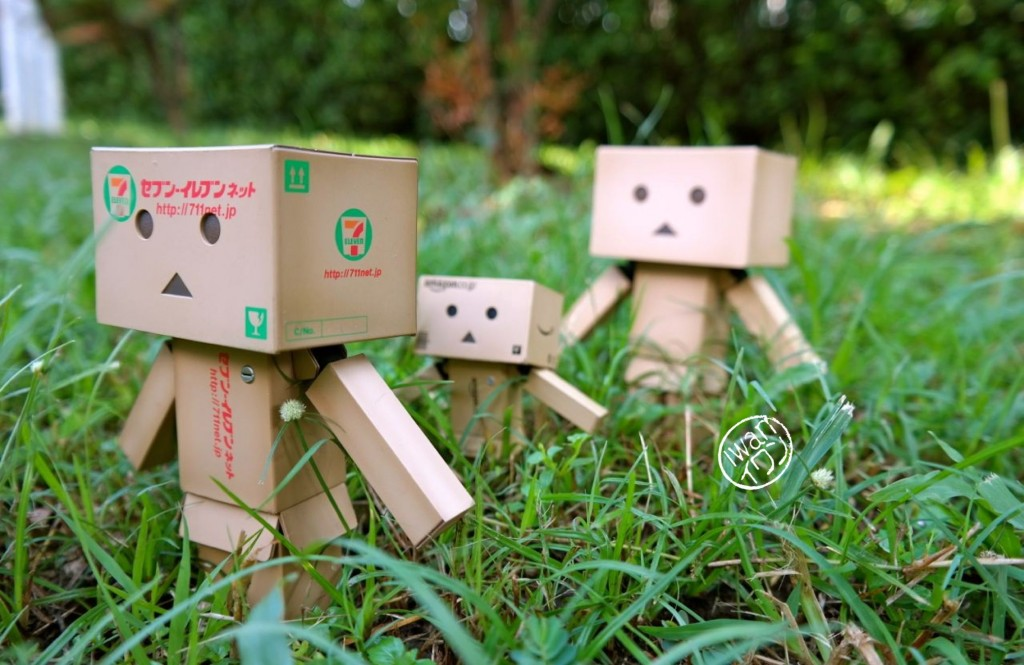 Days of Danboard. Photo by Junanto, taken with Samsung NX300